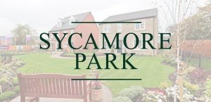 Sycamore Park | Smarter Travel Ltd